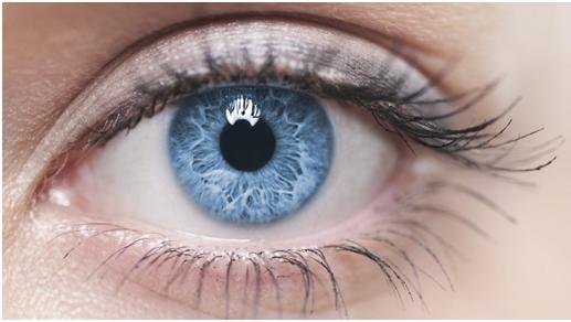 Lo sapevi che l'occhio umano ha una risoluzione di 576 megapixel e un Iphone 7 soltanto di 12
